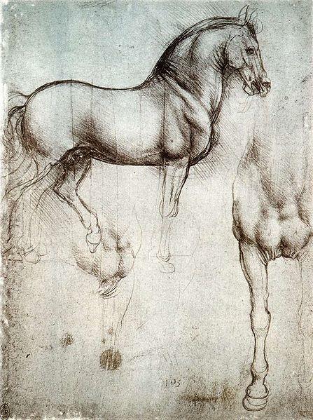 Leonardo horse sketch